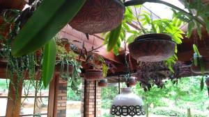 Decoração cheia de charme com suas plantas bem cuidadas